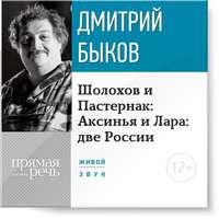 Быков, Дмитрий  - Лекция «Шолохов и Пастернак: Аксинья и Лара: две России»