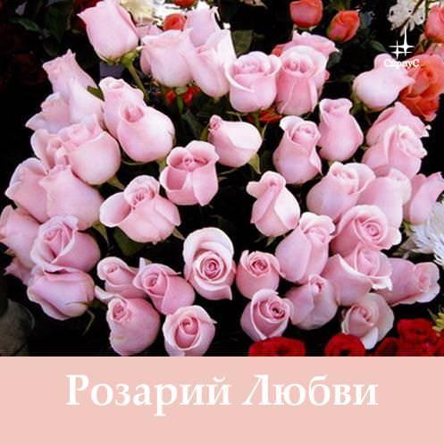 Татьяна Микушина Розарий Любви данилова татьяна николаевна