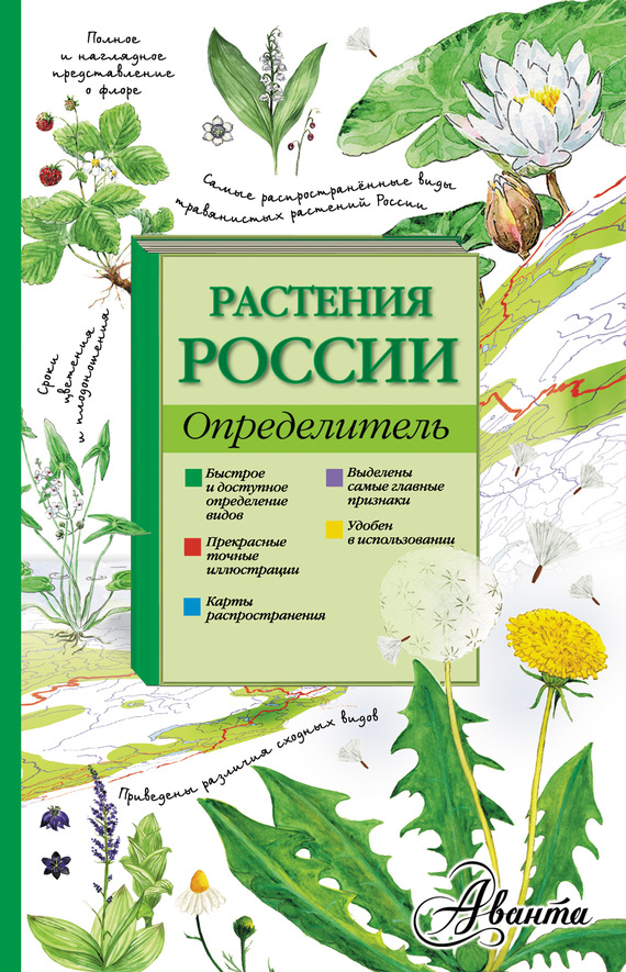 бесплатно Растения России. Определитель Скачать Ирина Пескова