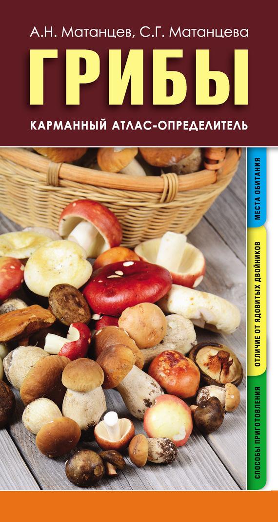 Александр Матанцев Грибы. Карманный атлас-определитель
