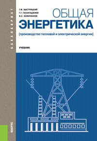 Геннадий Быстрицкий - Общая энергетика