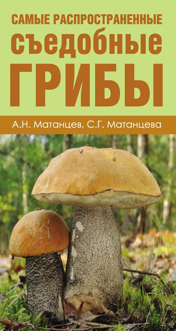 Александр Матанцев Самые распространенные съедобные грибы