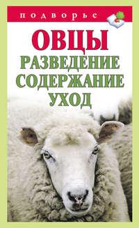 Мороз, Тамара  - Овцы. Разведение. Содержание. Уход