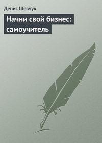 Шевчук, Денис  - Начни свой бизнес: самоучитель