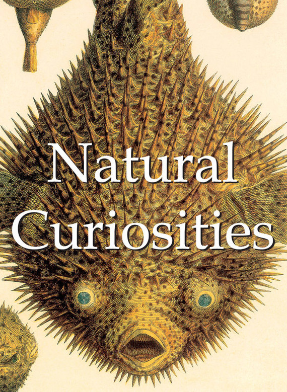 Alfred Russel  Wallace Natural Curiosities