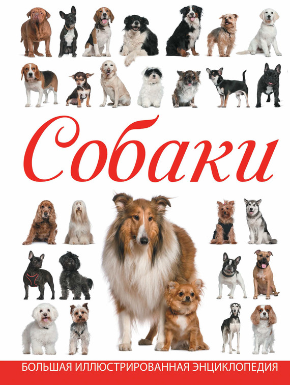 Любовь Вайткене Собаки