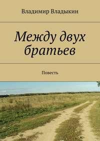 Владыкин, Владимир Аполлонович  - Между двух братьев