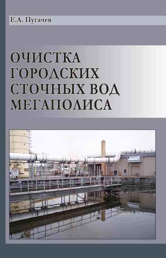 Е. А. Пугачев Очистка городских сточных вод мегаполиса
