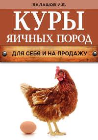 Балашов, Иван  - Куры яичных пород