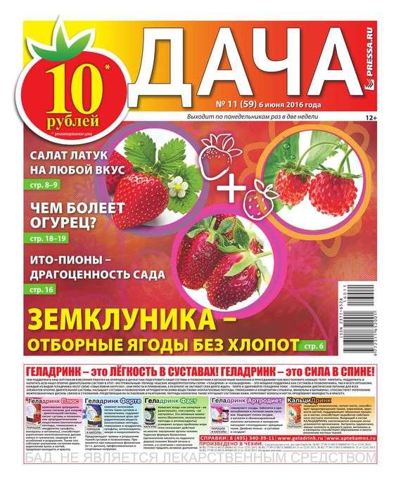 Дача Pressa.ru 11-2016