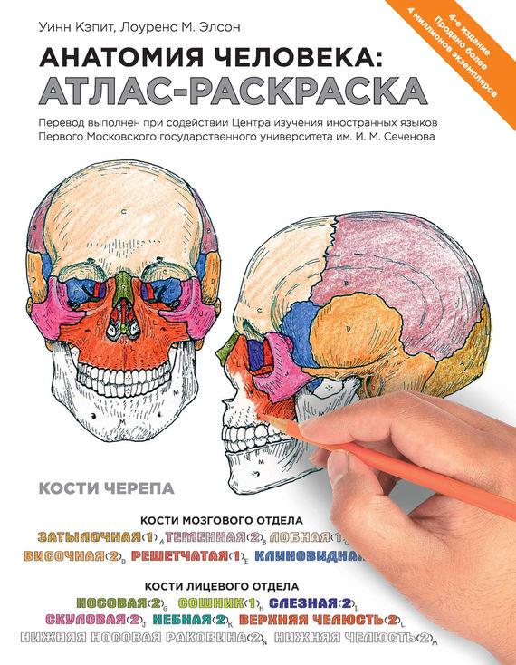 Уинн Кэпит Анатомия человека: атлас-раскраска ю в боянович анатомия человека компактный атлас раскраска
