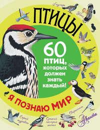 - Птицы. 60 птиц, которых должен знать каждый