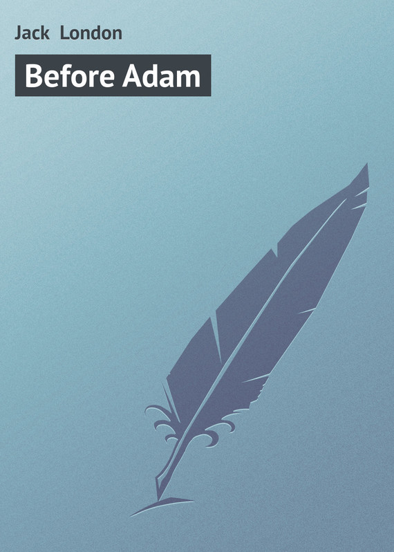 before-adam
