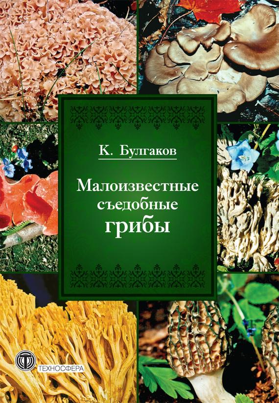 К. Г. Булгаков бесплатно