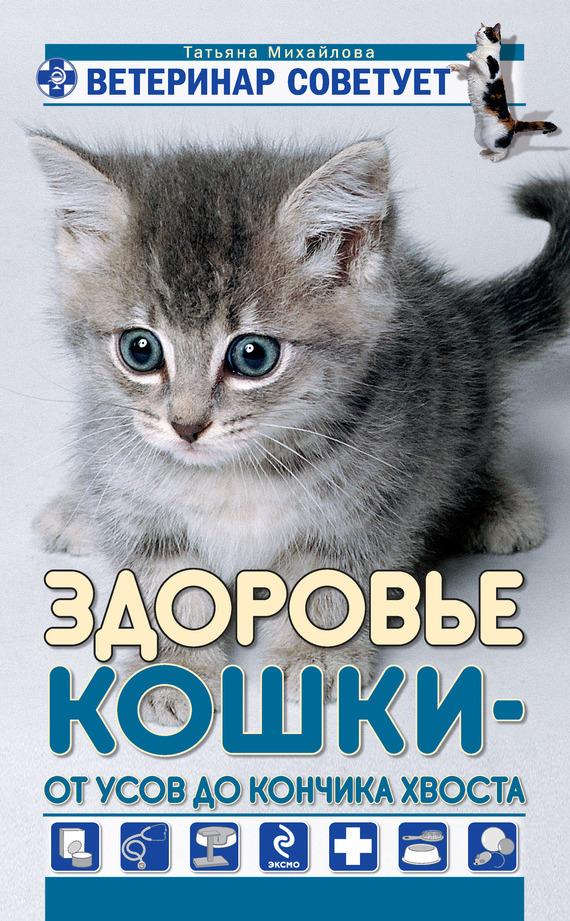 Здоровье кошки от усов до кончика хвоста