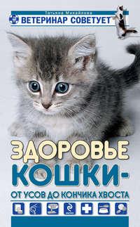 Михайлова, Татьяна  - Здоровье кошки от усов до кончика хвоста