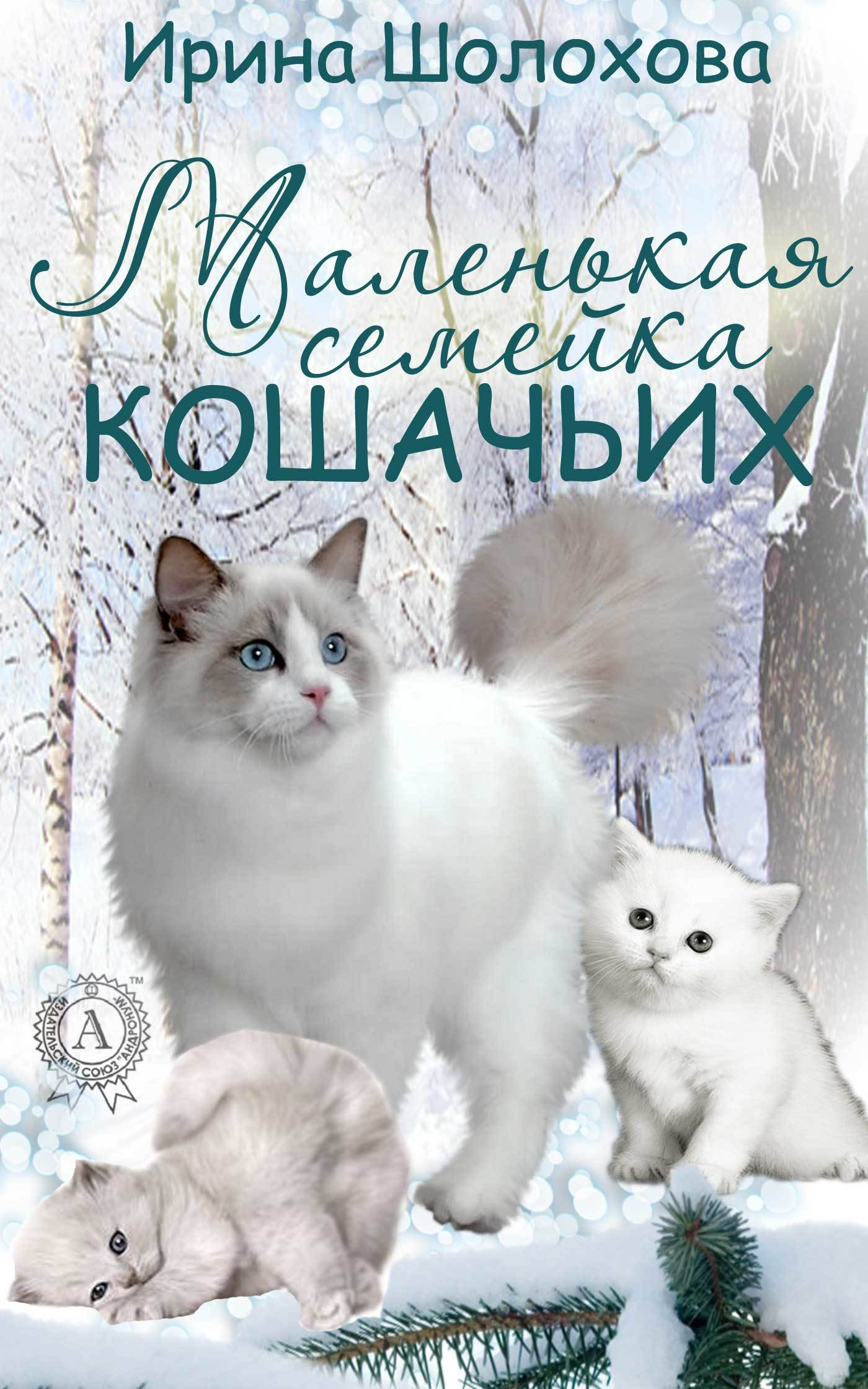 Маленькая семейка кошачьих развивается взволнованно и трагически