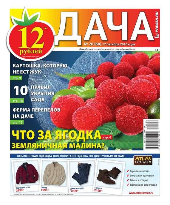 Дача Pressa.ru 20-2016