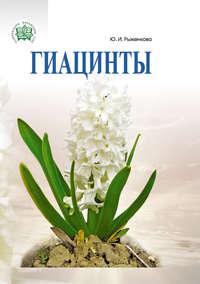 Рыженкова, Юлия  - Гиацинты