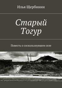 Щербинин, Илья  - Старый Тогур. Повесть о соскользнувшем селе