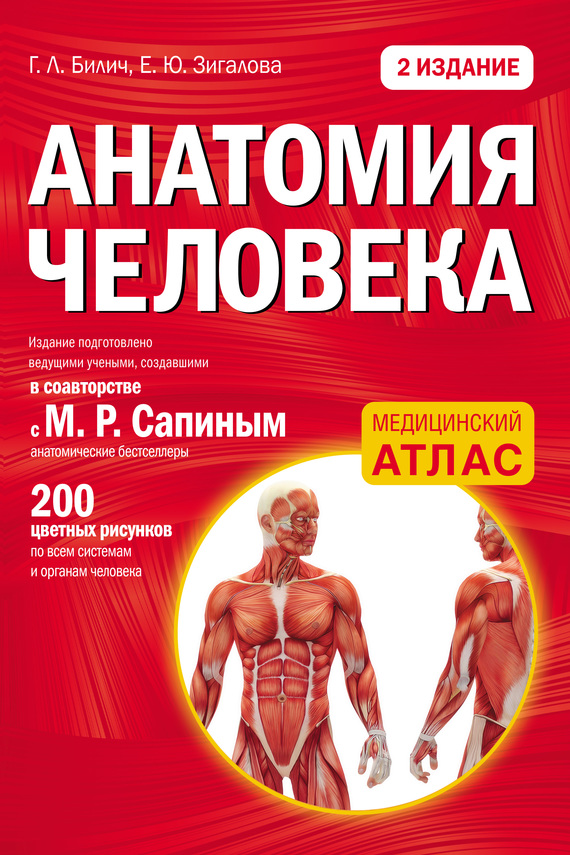 Г. Л. Билич Анатомия человека анна спектор большой иллюстрированный атлас анатомии человека