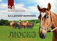 Воронин, Владимир  - Люска