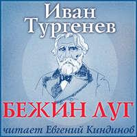 Тургенев, Иван Сергеевич  - Бежин луг