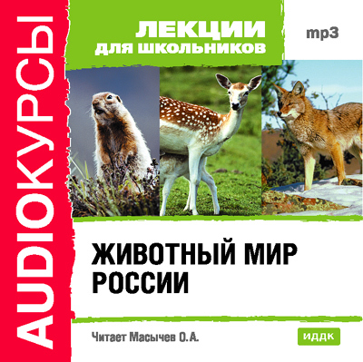 Коллектив авторов Животный мир России лазарева и лось в облаке