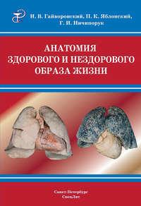Ничипорук, Г. И.  - Анатомия здорового и нездорового образа жизни атлас