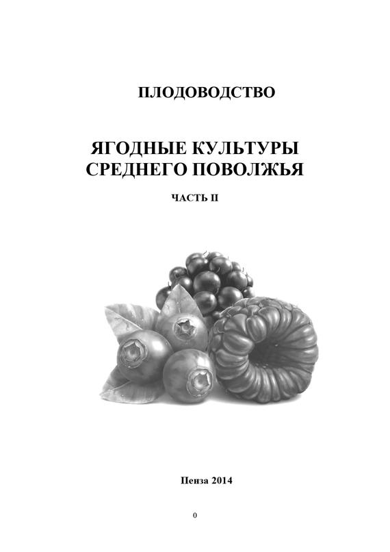 напряженная интрига в книге О. М. Касынкина