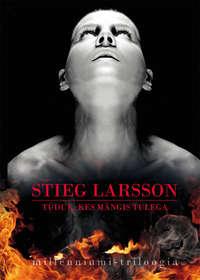 Larsson, Stieg  - T?druk, kes m?ngis tulega