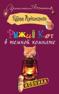 Александрова, Наталья  - Рыжий кот в темной комнате