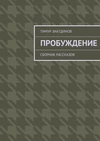Тимур Зиатдинов - Пробуждение. Сборник рассказов