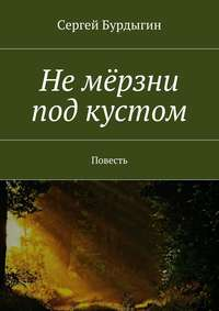 Бурдыгин, Сергей  - Не мёрзни под кустом. Повесть