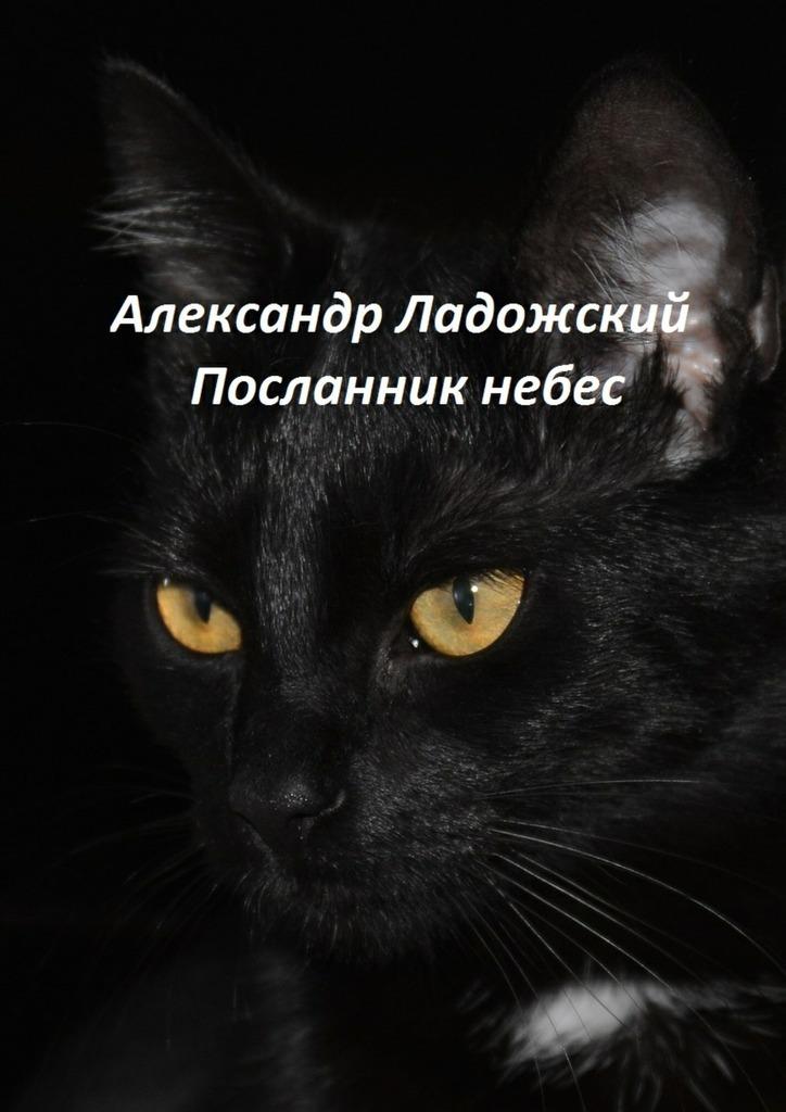 Александр Александрович Ладожский Посланник небес александр александрович волк библия разума