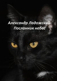 Ладожский, Александр Александрович  - Посланник небес