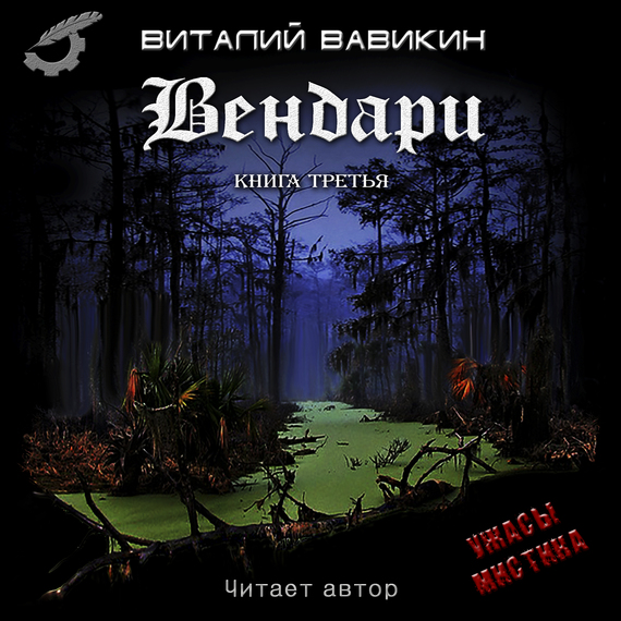 Виталий Вавикин Вендари. Книга третья виталий вавикин квазаразмерность книга 5