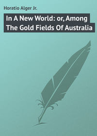 Alger Horatio Jr. - In A New World: or, Among The Gold Fields Of Australia