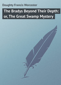 Worcester, Doughty Francis  - The Bradys Beyond Their Depth: or, The Great Swamp Mystery