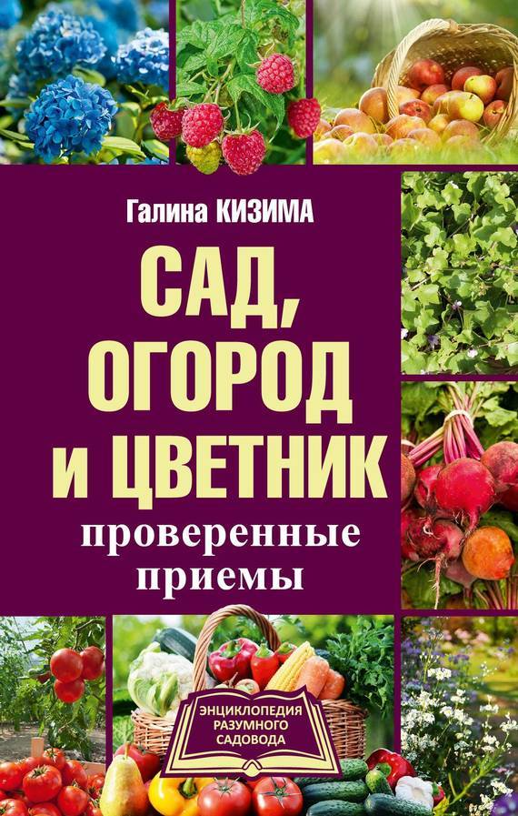 Галина Кизима Сад, огород и цветник. Проверенные приемы наш огород