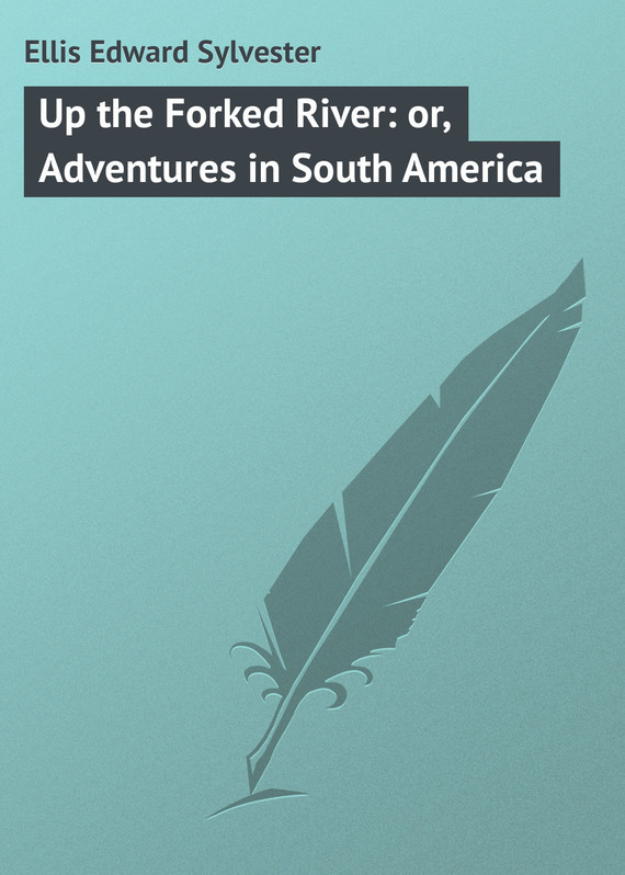 Ellis Edward Sylvester Up the Forked River: or, Adventures in South America democracy in america nce