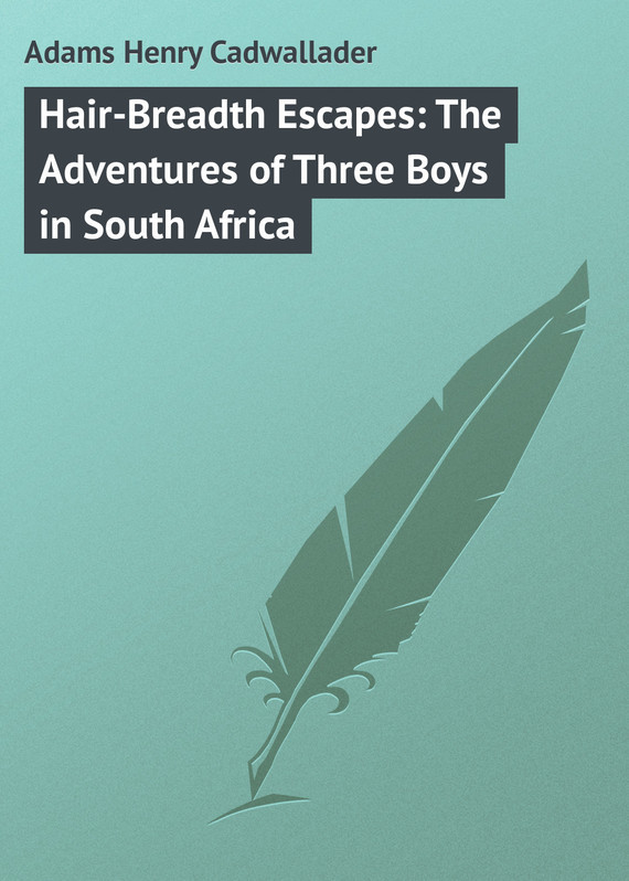 Adams Henry Cadwallader. Hair-Breadth Escapes: The Adventures of Three Boys in South Africa