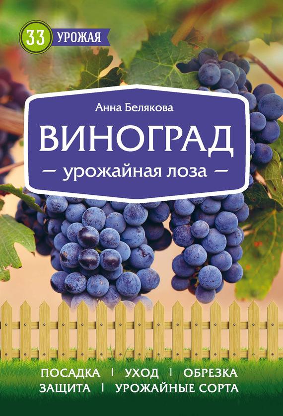 яркий рассказ в книге Анна Белякова