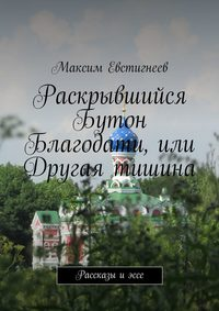 Евстигнеев, Максим  - Раскрывшийся Бутон Благодати, или Другая тишина. Рассказы иэссе