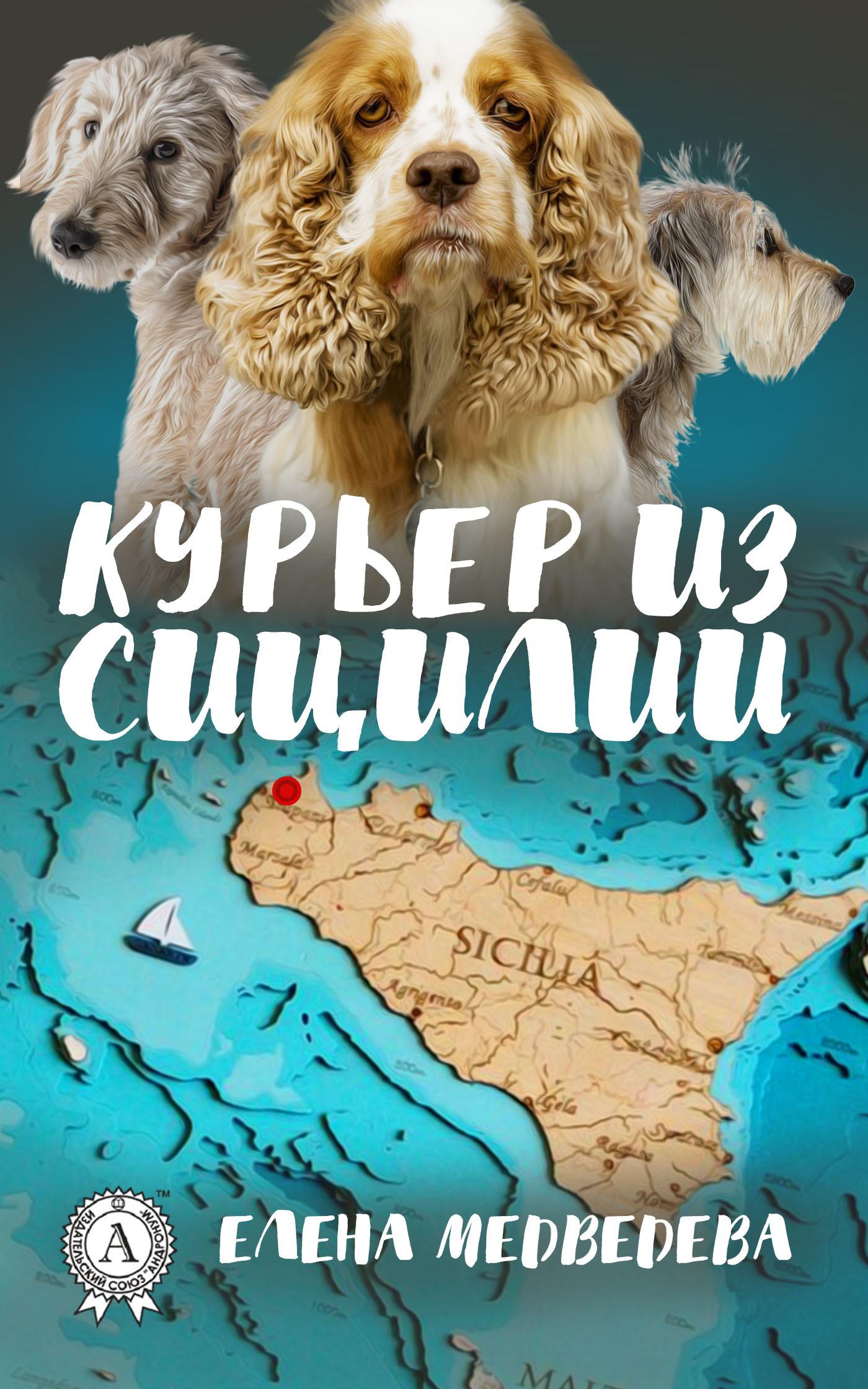 захватывающий сюжет в книге Елена Медведева