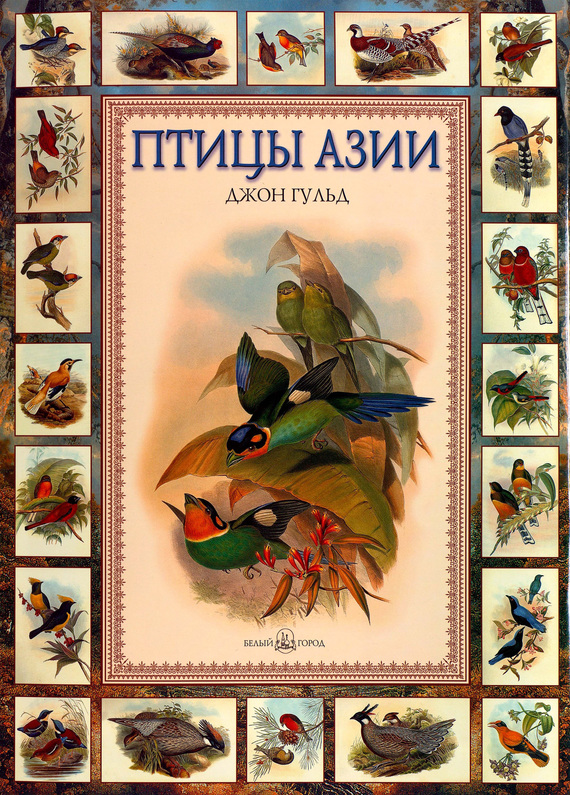 цены Евгений Коблик Птицы Азии
