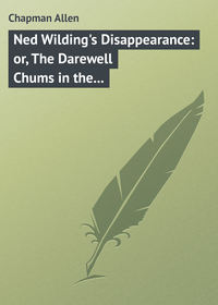 Chapman Allen - Ned Wilding's Disappearance: or, The Darewell Chums in the City