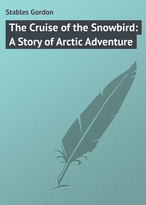 Stables Gordon The Cruise of the Snowbird: A Story of Arctic Adventure ковер stables