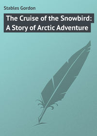 - The Cruise of the Snowbird: A Story of Arctic Adventure