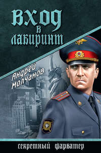 Молчанов, Андрей  - Вход в лабиринт